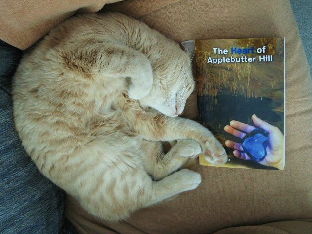 Goofus, a strawberry blonde tabby gets cozy with a paperback copy of The Heart of Applebutter Hill by his Mom, Donna W. Hill. The cover shows a cave scene with a hand holding the blue Heartstone of Arden-Goth: photo by Rich Hill.