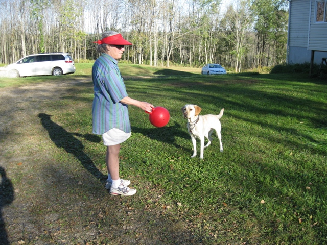 Donna W. Hill, author of the highly recommended novel, The Heart of Applebutter Hill, takes a break to play with her yellow Lab guide dog, Mo, and his red Jolly Ball: photo by Rich Hill.