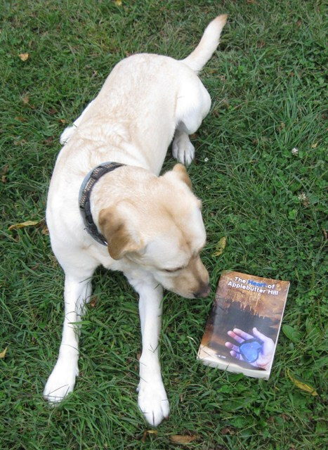 Mo, a male yellow Lab guide dog, in the grass with a copy of The Heart of Applebutter Hill by his Mom, Donna W. Hill. Cover shows cave scene - stalactites reflected in an underground lake, with a hand holding the blue, Heartstone of Arden-Goth: photo by Rich Hill.
